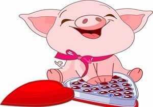 1983年属猪的人2017年运势 1983年2017运势