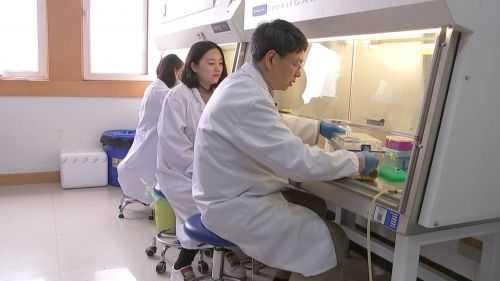 发现抗炎药物可将血糖恢复正常 治疗糖尿病的最新药