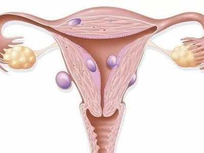 女人自己都不知道的阴道小秘密 世界女人阴道最深