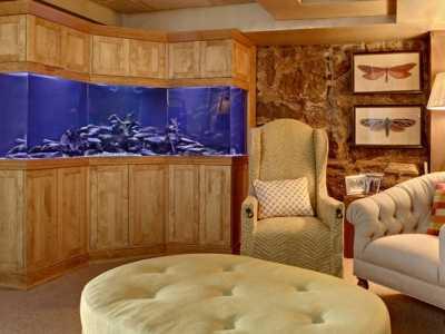 鱼缸在卧室里应该怎幺摆放 卧室养鱼好不好