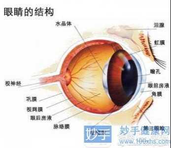 过敏性结膜炎日常应注意哪些 过敏性眼结膜炎