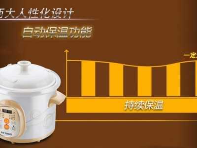 Tonze/天际智能陶瓷电炖锅 陶瓷锅可以做哪些菜