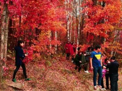 最适合一家人的国庆赏秋旅游地 适合秋天旅游的国家