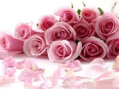 玫瑰美白嫩肤精油的调制 精油与肌肤