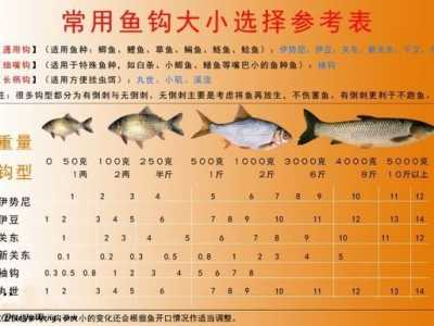 鱼钩大小的选择对比图及鱼钩大小子线粗细 鱼钩型号