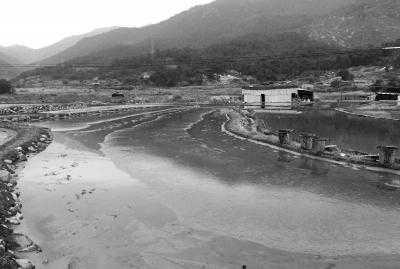 长乐潭头镇现30亩红虫养殖场 办公室养花易生蚊子
