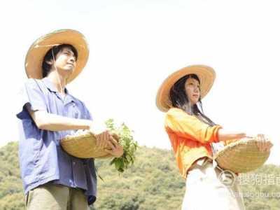有什幺好看的日本小清新电影 好看的清新电影