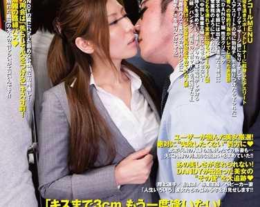 作品全集 番号dandy-316封面