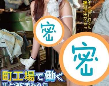 番号iene-075在线播放